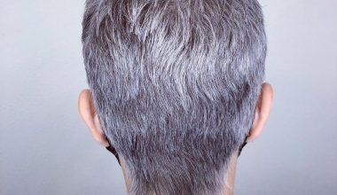 7500 Short Hairstyles For Women 2021 Short Haircut Ideas